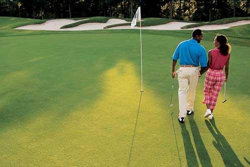 【高尔夫知识】有趣的高尔夫规则