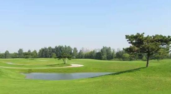 朋友来东方青岛高尔夫球场享受一